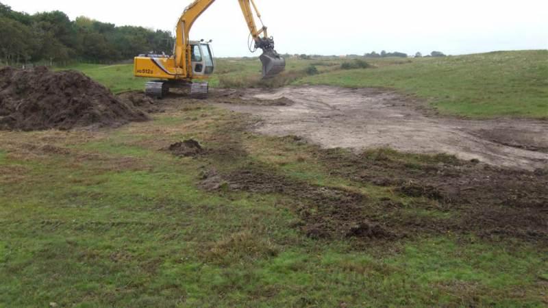 Natuurherstelprojecten voor duinen