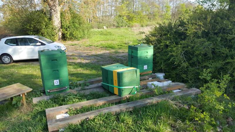 Wéér vandalisme bijenkasten Idylle in Brielle
