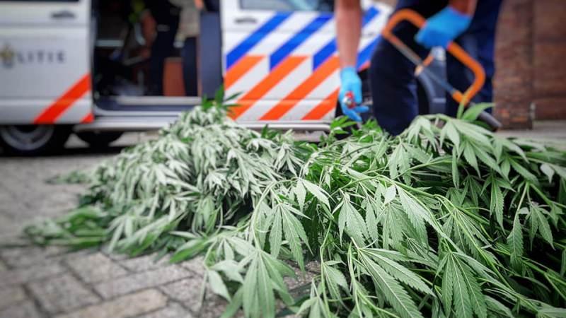 Drugsdealer aangehouden in Hellevoetsluis