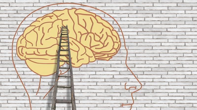 Training over kennis van psychische problemen