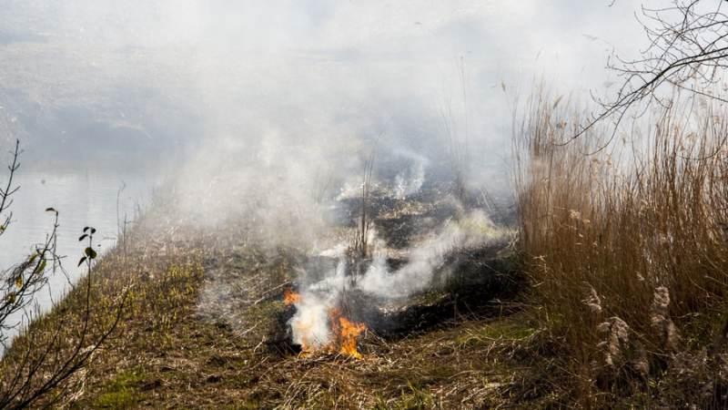 Help mee om natuurbranden te voorkomen