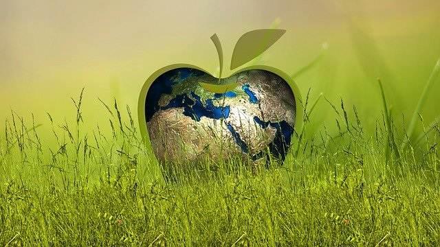 PvdA Nissewaard blij met Duurzaamheidslening