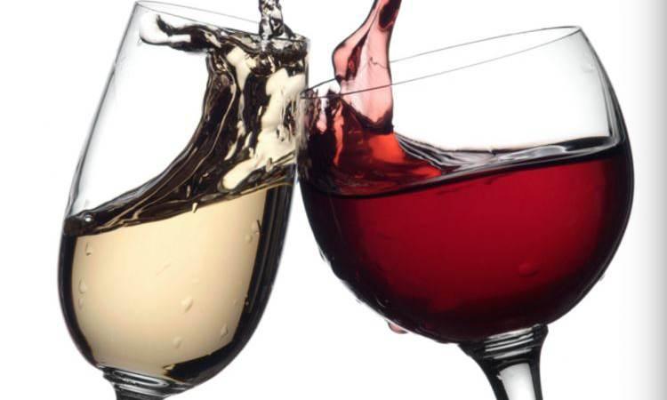 Coronaproof 'wijnrit'