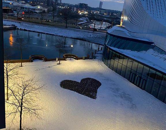 Hart van 180 sneeuweenden duikt op in Spijkenisse