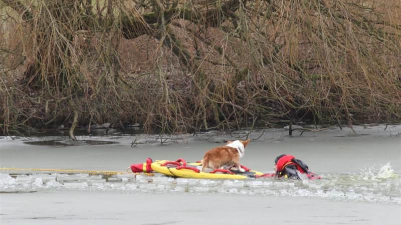 Jongen springt hond achterna en zakt door ijs